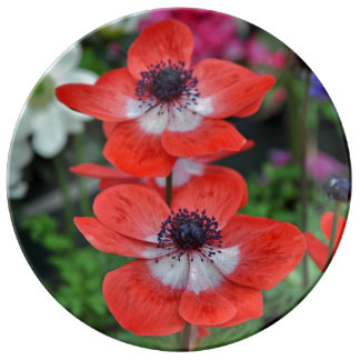 Impresión floral roja de dos amapolas plato de porcelana