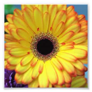 Impresión fotográfica de la flor amarilla