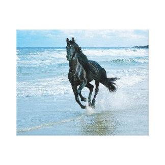 Miles de diseños de lienzos con diseños con caballos en Zazzle