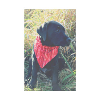 Impresión negra del perrito del laboratorio