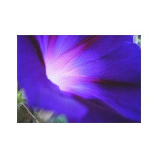Impresión púrpura y azul de la correhuela