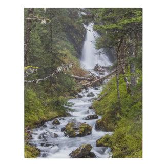 Impresión soñadora de la lona de la cascada