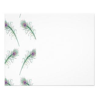 Impresión verde púrpura de la pluma del pavo real folleto 11,4 x 14,2 cm
