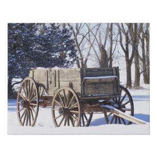 Impresión vieja de la lona del carro