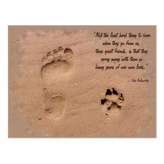 Impresiones del mascota y del dueño en la arena postal