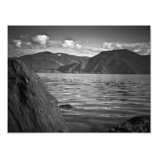 """IMPRESIONES - """"monarcas verdes a lo largo del lago Fotos"""