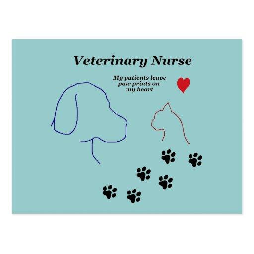 Impresiones veterinarias de la Enfermera-Pata en m Tarjeta Postal
