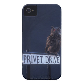 Impulsión de Privet iPhone 4 Coberturas