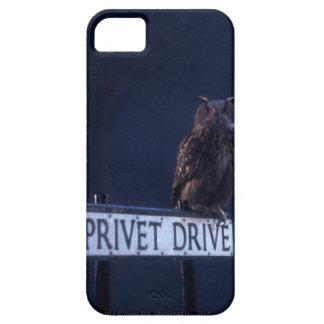 Impulsión de Privet iPhone 5 Fundas