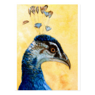 Indian Peafowl 721 design by Schukina Postales