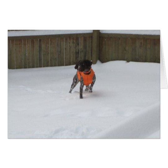 Indicador de pelo corto alemán en la nieve tarjeta pequeña