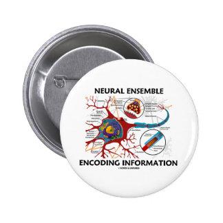 Información de los nervios de la codificación del chapa redonda de 5 cm