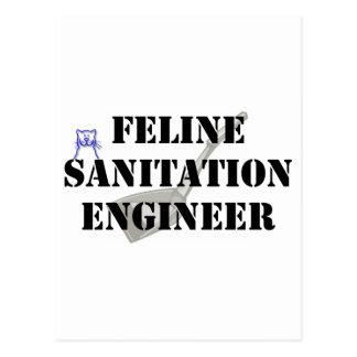 Ingeniero de saneamiento felino postal