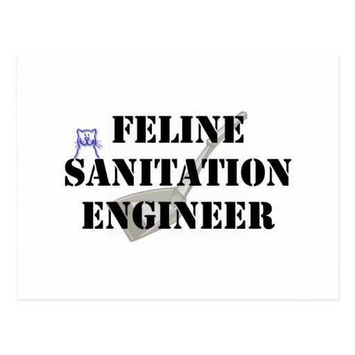 Ingeniero de saneamiento felino tarjetas postales