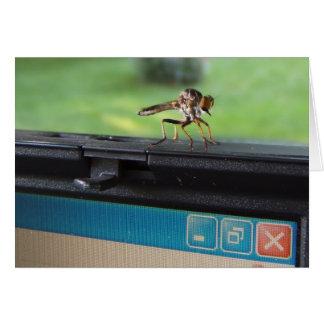 Insecto en tarjeta del ~ del sistema