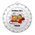 Interior animal de la célula (célula eucariótica d tablero de dardos