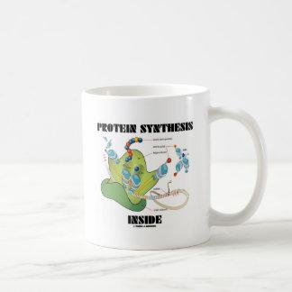 Interior de la síntesis de la proteína biología c tazas