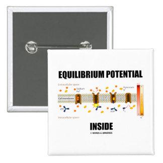 Interior del potencial del equilibrio (transporte chapa cuadrada 5 cm