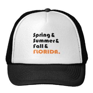 Invierno de la Florida Gorra