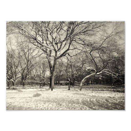 Invierno de Nueva York - nieve del East Village Impresión Fotográfica