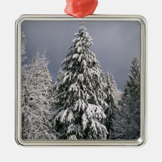 Invierno imperecedero del ornamento del navidad