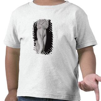 Invierno o la mujer fría camiseta
