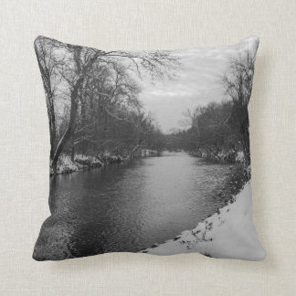 Invierno pacífico en el Grayscale de James River Cojín Decorativo