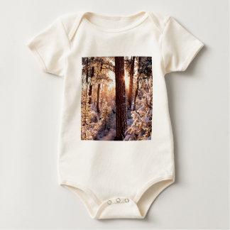 Invierno Ponderosa Starburst Fremont Oregon Body De Bebé