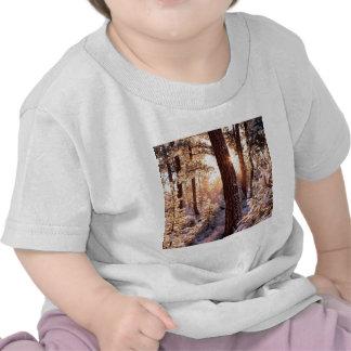 Invierno Ponderosa Starburst Fremont Oregon Camiseta