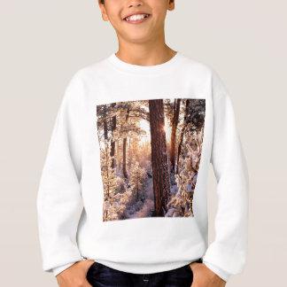 Invierno Ponderosa Starburst Fremont Oregon Camisetas