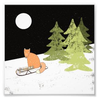Invierno Sledding Fox - ejemplo Foto
