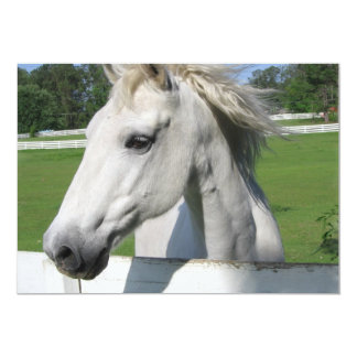 Invitación árabe blanca del caballo invitación 12,7 x 17,8 cm