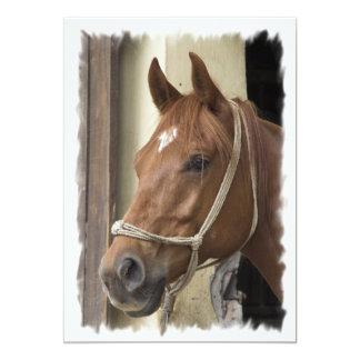 Invitación árabe de los caballos invitación 12,7 x 17,8 cm