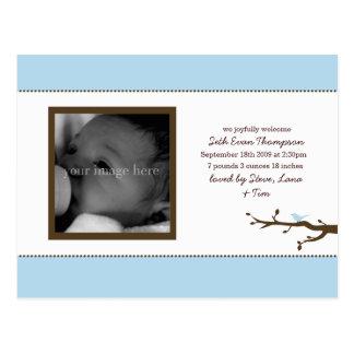 Invitación azul del bebé del pájaro postal