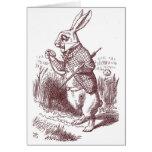 Invitación blanca de la ducha del conejo tarjetas