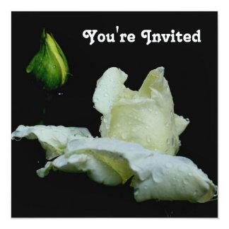 Invitación blanca de la flor del capullo de rosa