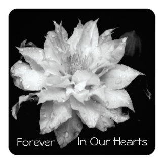 Invitación conmemorativa fúnebre del Clematis 3b