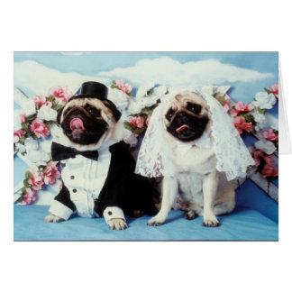 Tarjetas de felicitación con animales