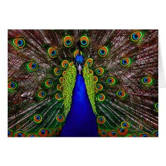 Invitación de la tarjeta del pavo real