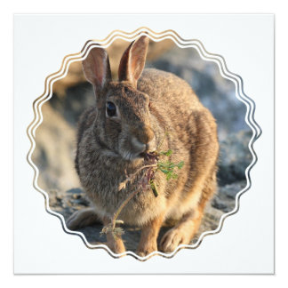 Invitación del conejo invitación 13,3 cm x 13,3cm