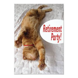 Invitación del fiesta de retiro con el gato