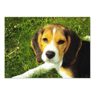 Invitación del perrito del beagle