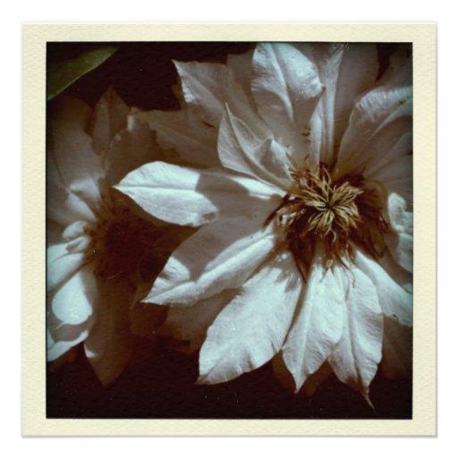 Invitación floral del entierro de la fotografía