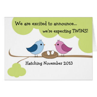 """Invitación """"pájaros del embarazo de los gemelos en tarjetón"""