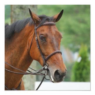 Invitaciones árabes del caballo de la bahía invitación 13,3 cm x 13,3cm