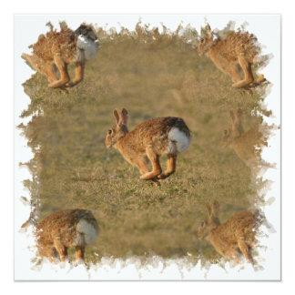 Invitaciones de la lupulización del conejo comunicados