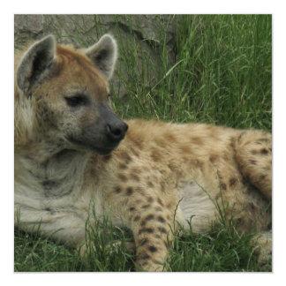 Invitaciones de los Hyenas de risa Invitación 13,3 Cm X 13,3cm