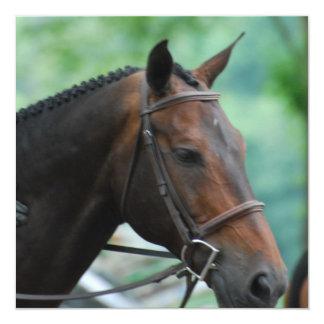 Invitaciones magníficas del caballo de Warmblood Invitacion Personalizada
