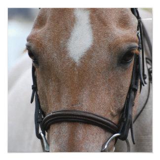 Invitaciones meladas del caballo de la fresa invitacion personal