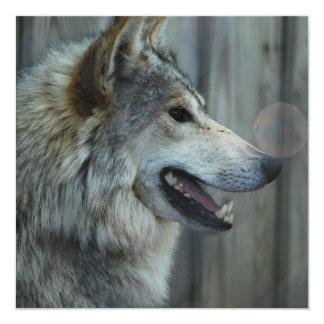 Invitaciones mexicanas del lobo invitación 13,3 cm x 13,3cm